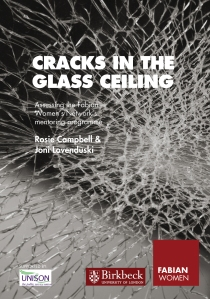 Cracks in the glass ceiling: mentoring programme evalution ...